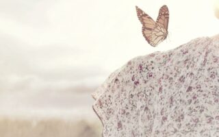 A butterfly sitting on a womans shoulder, representing life