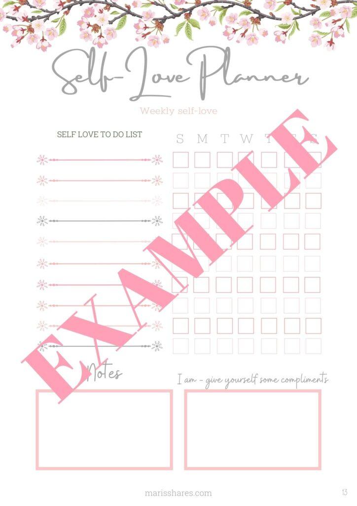 Planner-Self-love-workbook-example